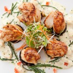 FINE DINING: Scallops with Stornoway Blackpudding